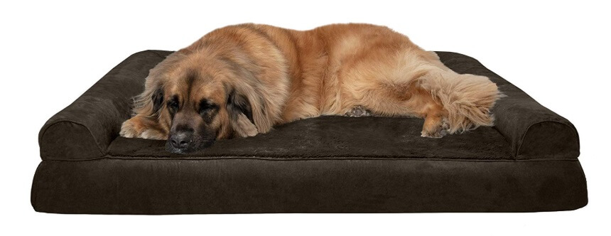 Best Dog Beds For Large Breeds - FurHaven Orthopedic