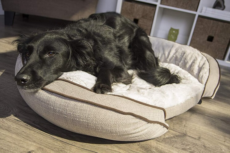 Best Dog Beds For Large Breeds - Sterling Cooling Memory Foam 2