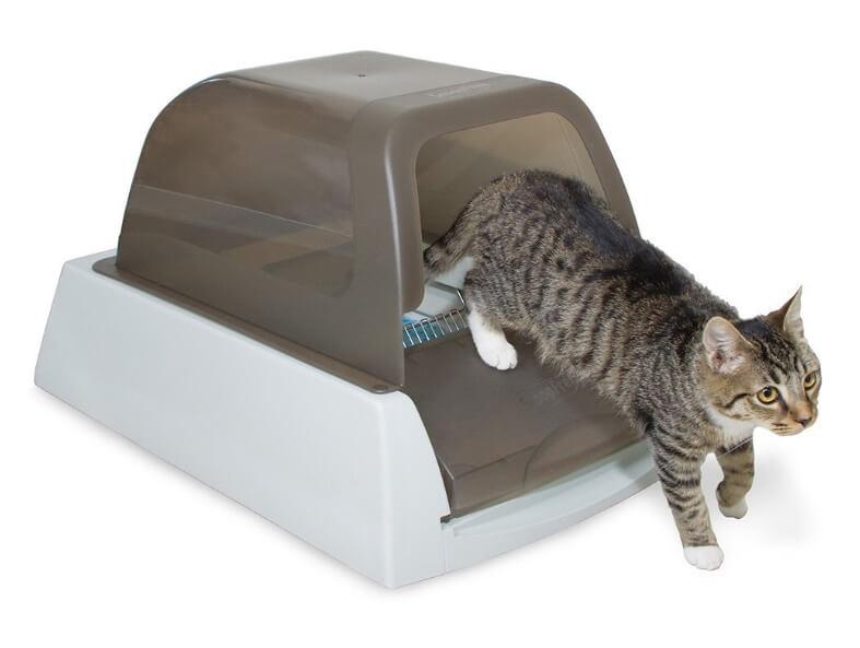 Best Self-Cleaning Litter Boxes - PetSafe ScoopFree