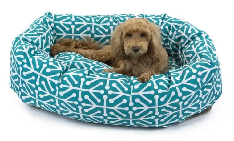 Majestic Pet Aruba Bagel Dog Bed - Pacific