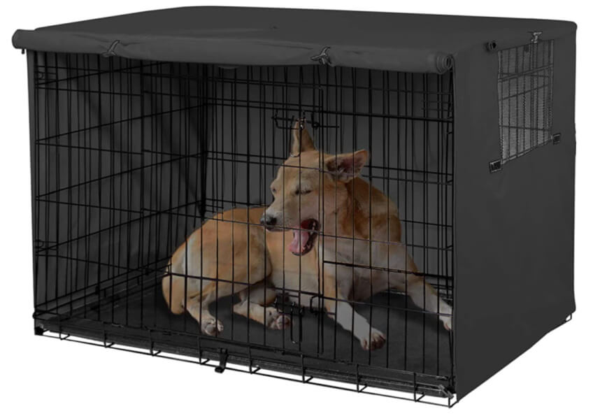 Example of dog in closed dog crate